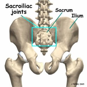 Greenville NC Chiropractor Hip Adjustments